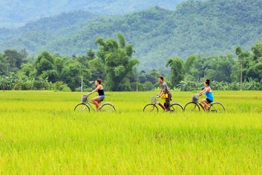 How to get to Ninh Binh ?