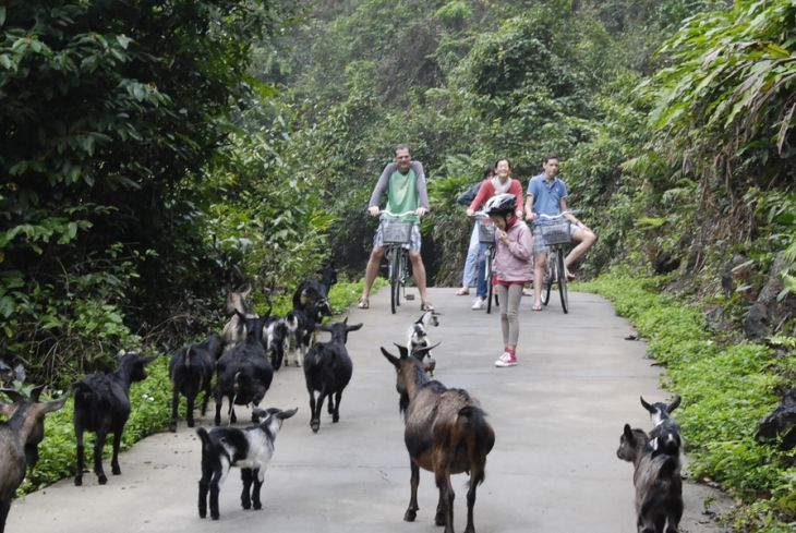 Cat Ba biking trip